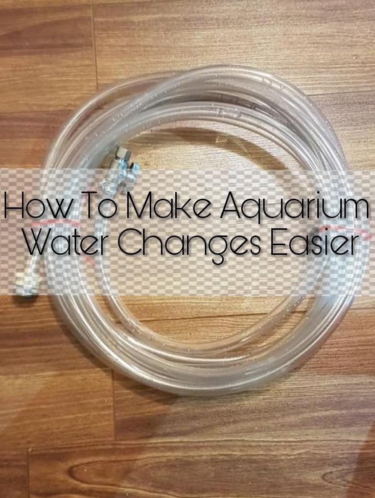 How To Make Aquarium Water Changes Easier Aquarium Diy Water Coral Reef Aquarium