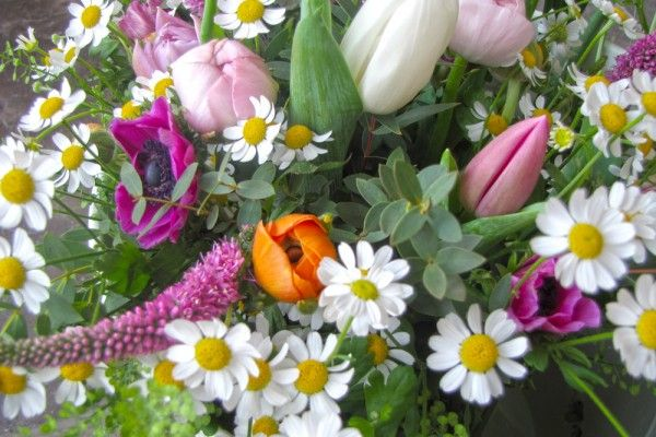 A Mother's Day bouquet with Tanacetum, Tulips, Veronica, Anemone and Ranunculus