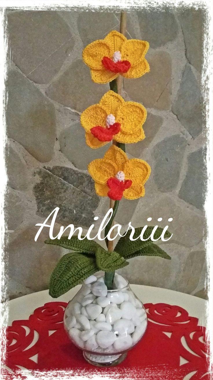 Dalla pagina Facebook : Amiloriii