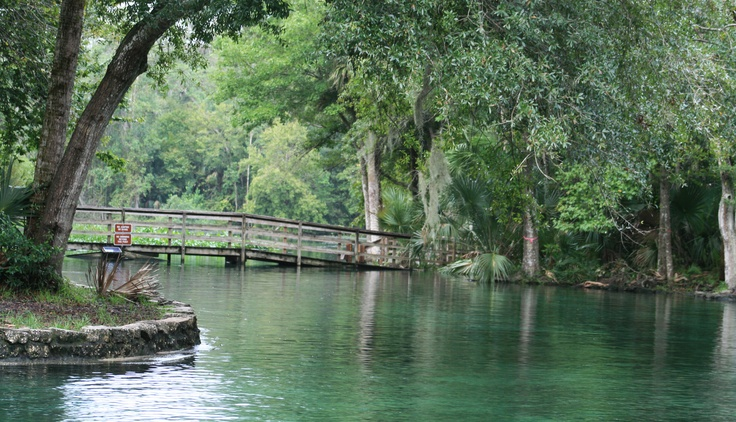 #2 on my list of favorite plalces...  Wekiva Springs