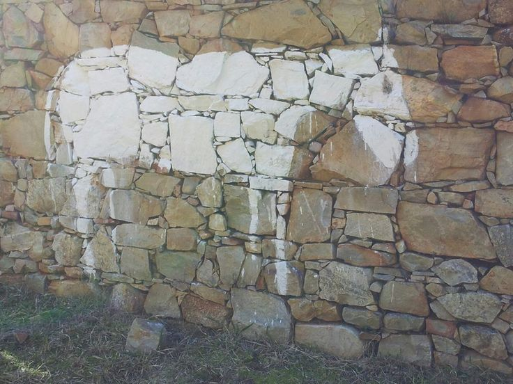 """FACEBOOK 16 Aug Chris Reinders (photo).  'Trek' by Wilma Cruise, clay slip on Timber Shed walls, """"Trees are central to the social, political and natural landscapes of the region. I felt the ghostly presence of the animals, first mule trains from Knysna and then oxen  were used to drag the trees down the slippery slope to the shed and often into the sea for the waiting ships."""" Site_Specific #LandArtBiennale. #LandArt. #Plett"""