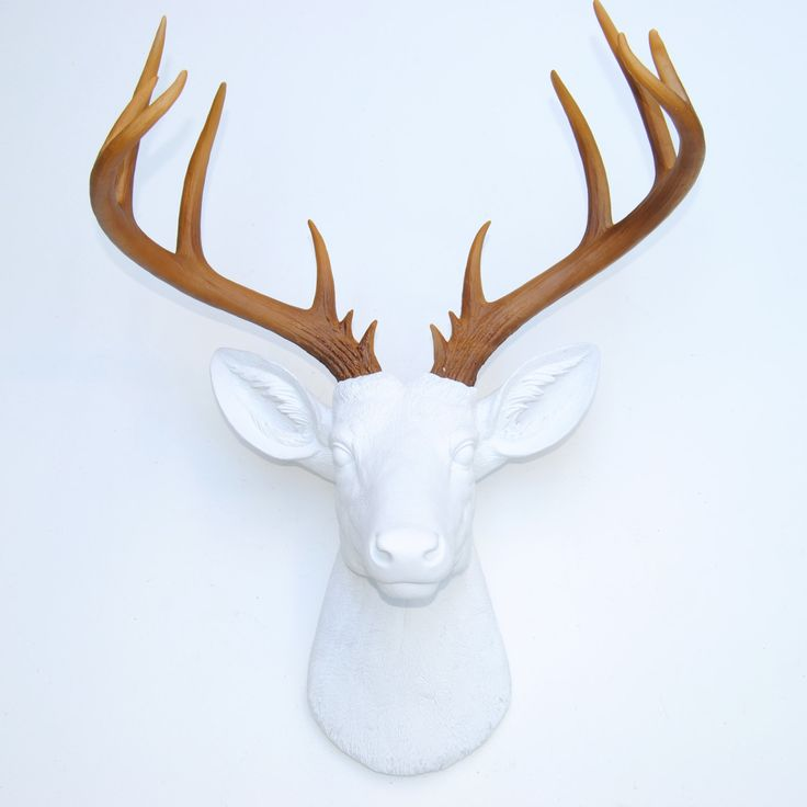 Jul 07,  · Deer Antler Headbands are made by Amelia on independent-allows.ml Wearers should use caution, as it is tall and may snag on chandeliers, doorways, and low hanging.