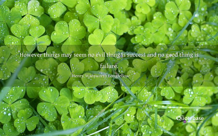 However things may seem no evil thing is success and no good thing is failure.