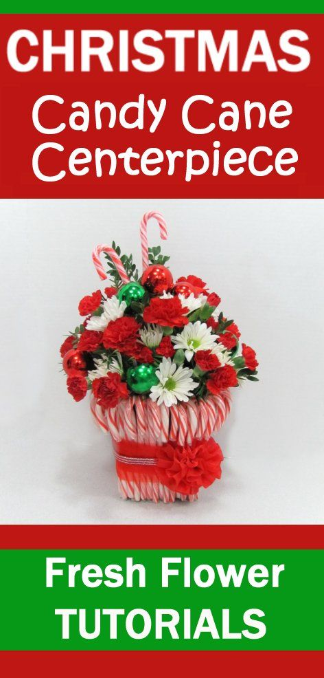 10 Best Images About Fresh Christmas Wreaths Greenery And