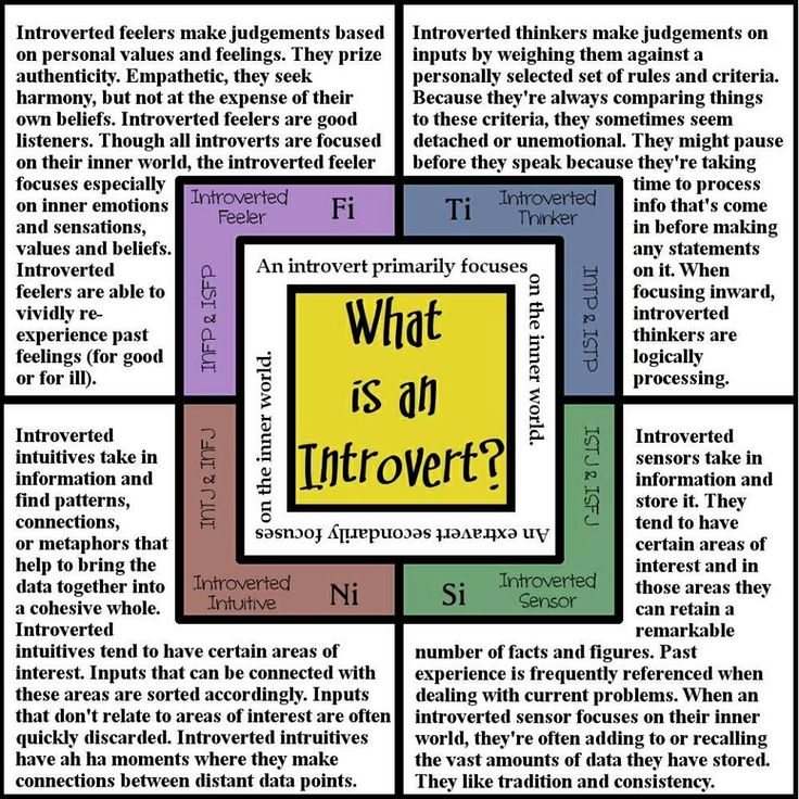 Introverted Feelers (Fi), Introverted Thinkers (Ti), Introverted Intuitives (Ni), Introverted Sensors (Si)