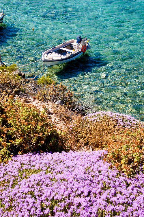 Amoopi bay on Karpathos island, Dodecanese