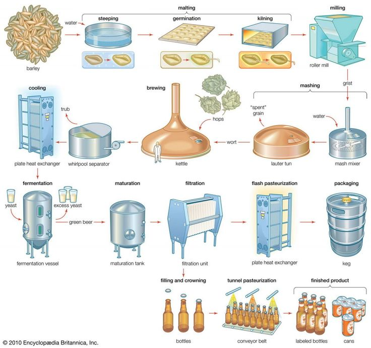 the process of making beer essay Use this beer glossary of common beer and brewing vocabulary to help you conditioning a step in the brewing process in which beer is matured or aged after.