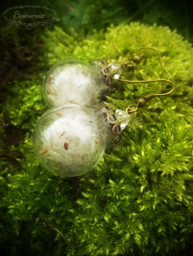 Earrings - glass balls with dandelion seeds.