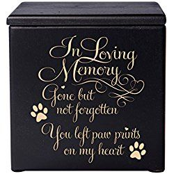 Cremation Urns for Pets Memorial Keepsake box for Dogs and Cats, Urn for pet ashes In loving Memory Gone but not forgotten you left pawprints on my heart Holds SMALL portion of ashes (Black)