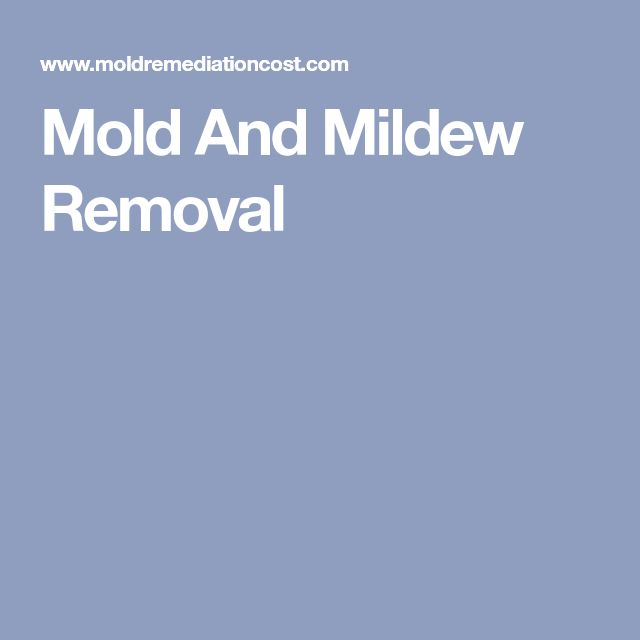 Mold And Mildew Removal