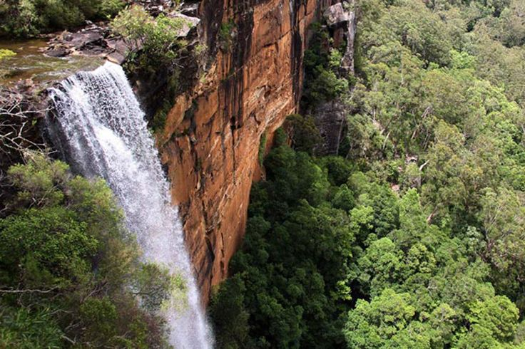 Fitzroy Falls - Morton National Park - Image National Parks