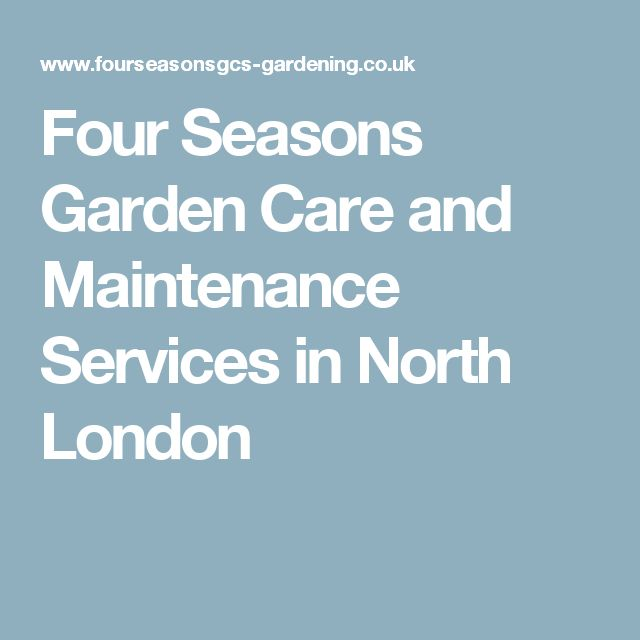 Four Seasons Garden Care and Maintenance Services in North London