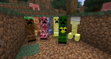 Gold creeper,Dirt creeper,Rapping creeper,Swimming creeper,Creepershroom,Lava creeper,and Water creeper.