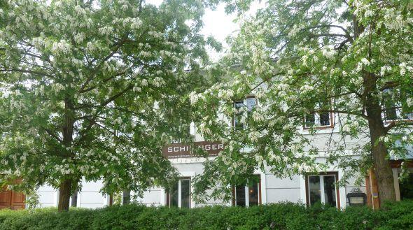 Schillinger, Hauptstrasse 46, 2002 Grossmugl