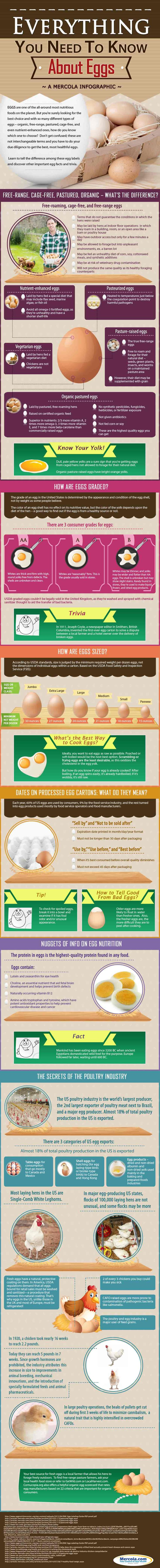 Everything You Need to Know About Eggs [by Mercola -- via Tipsographic] #eggs #organicfood #organic #tipsographic