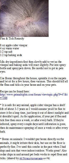 Natural FLEA & TICK spray...my dogs have not had fleas all summer and I only used this spray once!!: