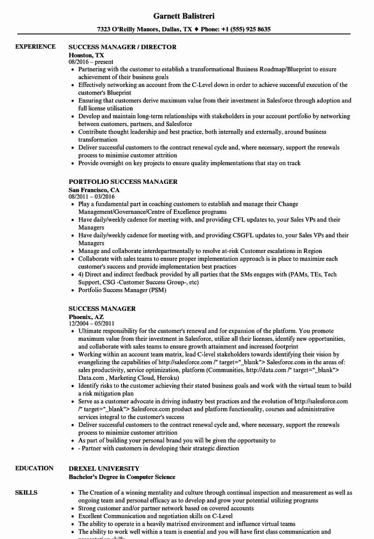 Customer Success Manager Resume Elegant Success Manager