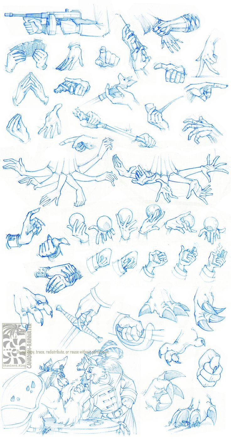 Anatomy - Hands by Canadian-Rainwater.deviantart.com on @deviantART