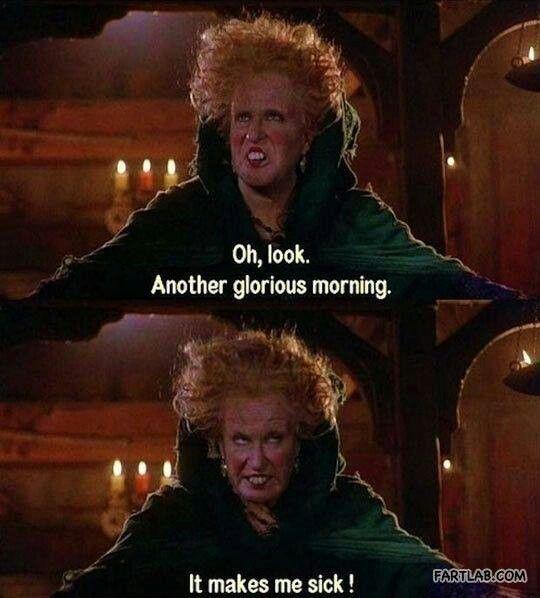 Hocus Pocus - lol I can relate!