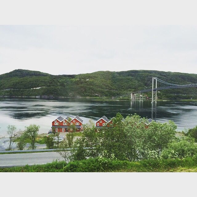 Harstad/Narvik/Evenes north of Norway ✌️