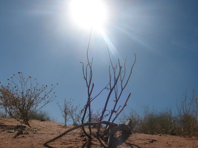 Hot painful blazing, Giver of life he taketh, Dry desert sand, so alone