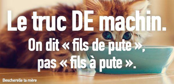 orthographe chaton - Recherche Google