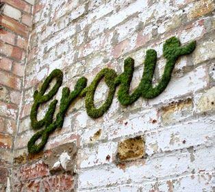 Moos-Grafitti - mit Moos Wände bemalen