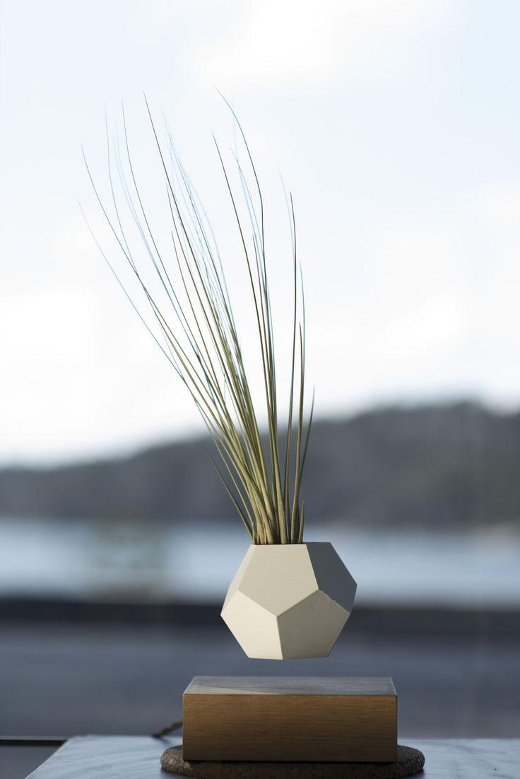Après sa lampe en lévitation, le suédois Simon Morris a expérimenté la lévitation des plantes. Ce système appelé LYFE, se compose d'un planteur qui plane un peu au dessus d'une base en …