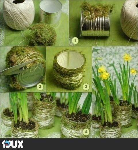 blikjes omhullen met mos, steentjes op de bodem en narcis in de pot.