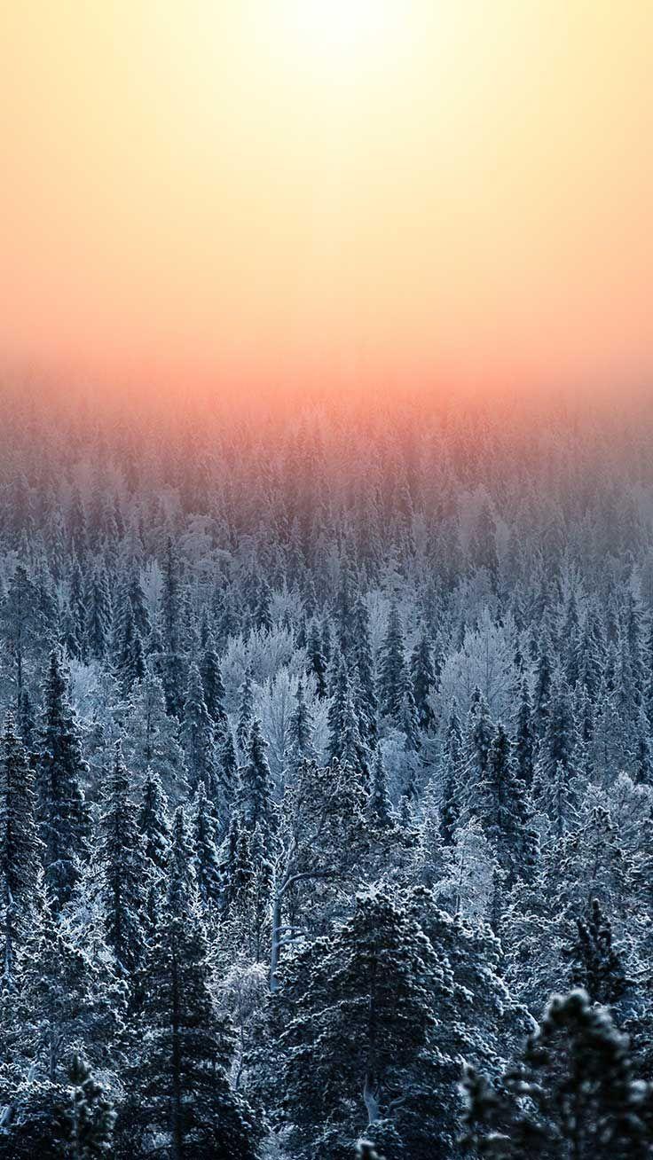 10 Wonderful Winter World Iphone X Wallpapers Preppy Wallpapers Iphone Wallpaper Winter Preppy Wallpaper Wallpapers Winter