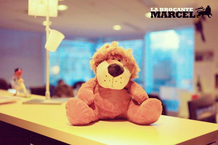 L'opportunité de s'endormir chaque nuit en rêvant d'une carrière aussi belle que Maurice Lévy (highlight : avoir créé l'agence Marcel. Big up!)