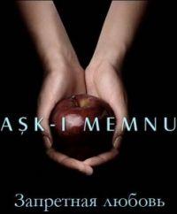 Сериал Запретная любовь Ask-i memnu смотреть онлайн бесплатно!