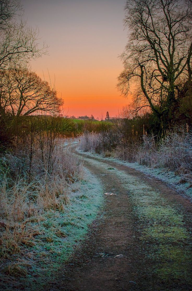 Frosty road (Scotland) by William Summers