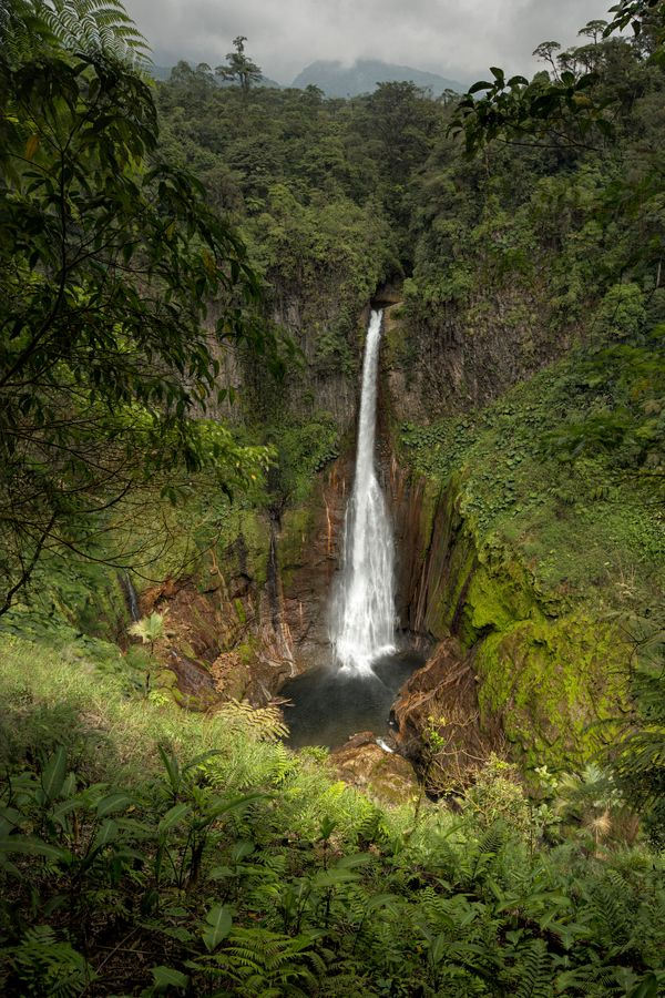 Catárata Del Toro, Costa Rica: Halisowl, Green Natural, Cataract, Catárata Del, Costa Rica, Natural Forests, Bull, Catrata Del, Cost Rica