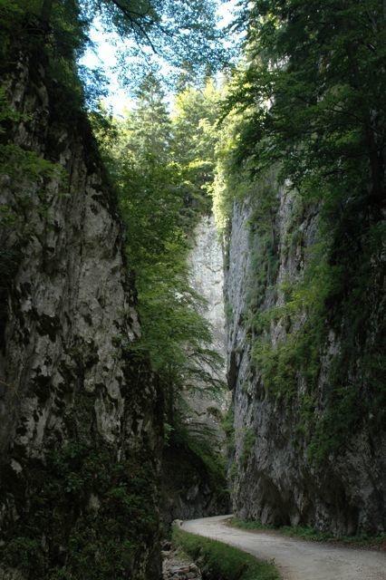 The Gorge of Piatra Craiului, below Magura