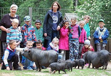 Namen der Hängebauchschweinchen