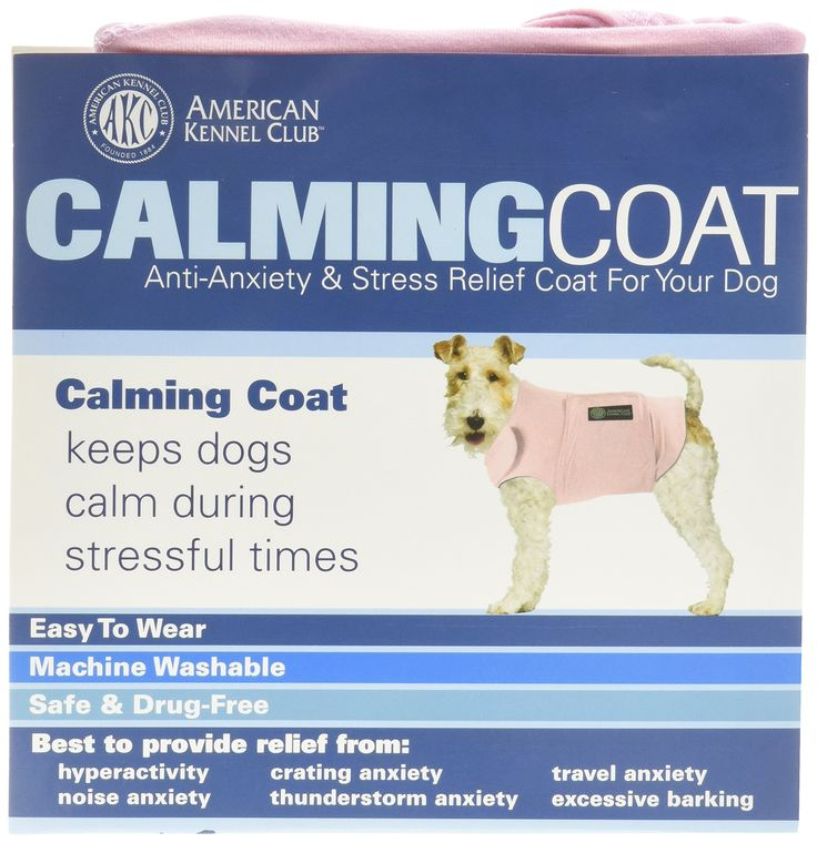 Best Anti Anxiety For Dogs