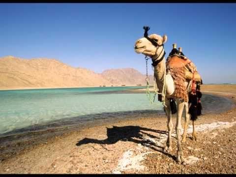 Tour Muslim Cheria