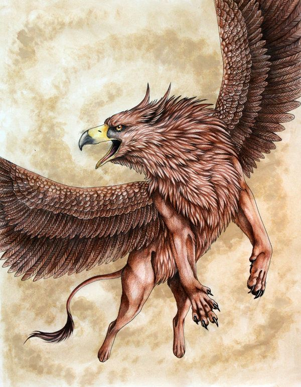 Griffin. The Griffin is a legendary creature with the head, beak and wings of an eagle, the body of a lion and occasionally the tail of a serpent or scorpion. Its origin lies somewhere in the Middle East where it is found in the paintings and sculptures of the ancient Babylonians, Assyrians and Persians. In Greek mythology, they took gold from the stream Arimaspias and, neighbors of the Hyperboreans, they belonged to Zeus.