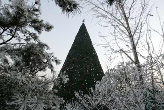 Gli alberi di Natale nel mondo -Pachino (Cina)- Gallery - Foto - Virgilio Viaggi