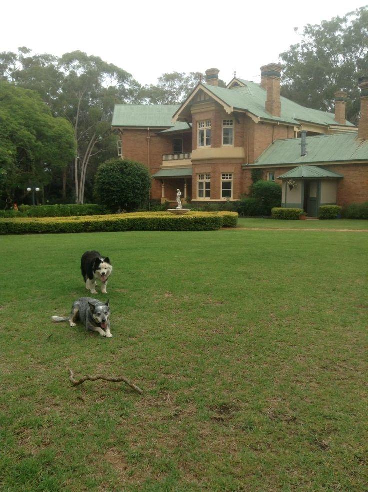 Blair Athol Estate (Inverell): See 51 Reviews and 59 Photos - TripAdvisor