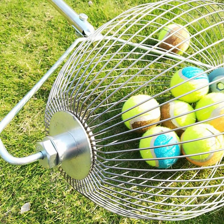 Special Offer Garden Collector Fruit Picker Chestnuts Harvester Stainless Steel Basket Ball Golf B Ball Bas In 2020 Fruit Picker Garden Tool Set Best Garden Tools
