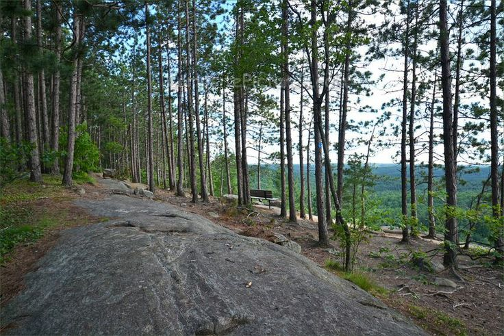 Algonquin Park Trails, Camping in Ontario, Lookout #algonquinpark