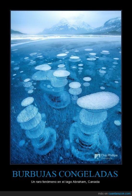 BURBUJAS CONGELADAS - Un raro fenómeno en el lago Abraham, Canada