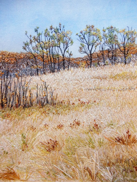 My Sweet Prairie: Autumn at Cranberry Flats - Just beautiful thread painting and embroidery!