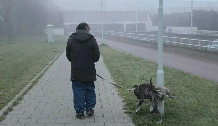 Man walking his dog in the morning