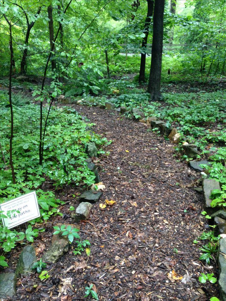 31 best UNC Charlotte Botanical Gardens images on Pinterest ...