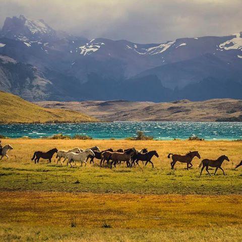 Una pequeña parada en la Laguna Azul. Parque Nacional Torres del Paine. CHILE #natgeo #natgeochile #torresdelpaine #lagunaazul #visitchile #chileestuyo #chiletravel #photography #photographer