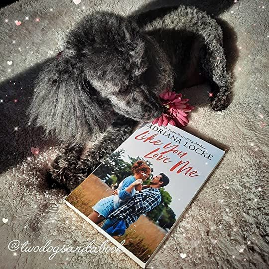 Click on the image to read my complete book review. #bookstadog #poodles #poodlestagram #poodlesofinstagram #furbabies #dogsofinstagram #bookstagram #dogsandbooks #bookishlife #bookishlove #bookstagrammer #books #booklover #bookish #bookaholic #reading #readersofinstagram #instaread #ilovebooks #bookishcanadians #canadianbookstagram #bookreviewer #bookcommunity #bibliophile #likeyouloveme #adrianalocke #montlake #bookreview