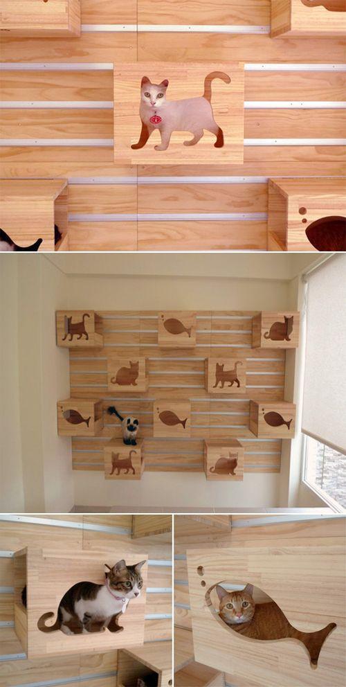 Nichos personalizados e divertidos! Uma boa ideia para sua casa ou ate mesmo decoração de Pet shop ;)